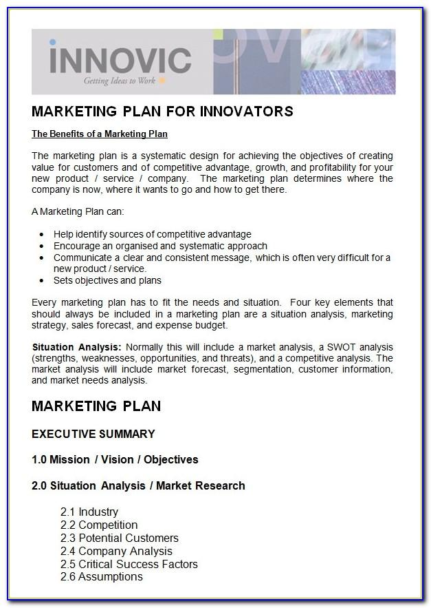 Sample Nonprofit Marketing Plan Template