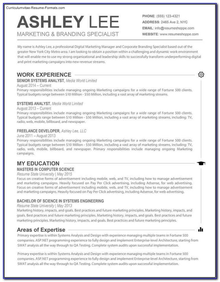 Best Resume Templates For Mac Pages
