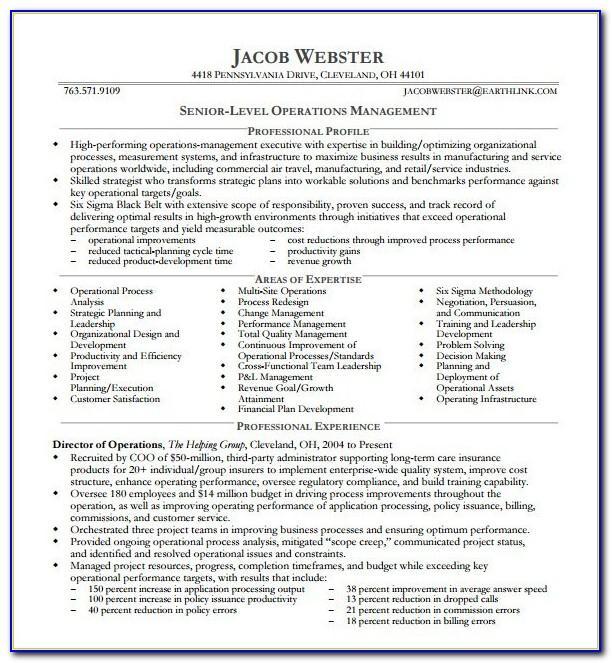 Executive Resume Templates Free