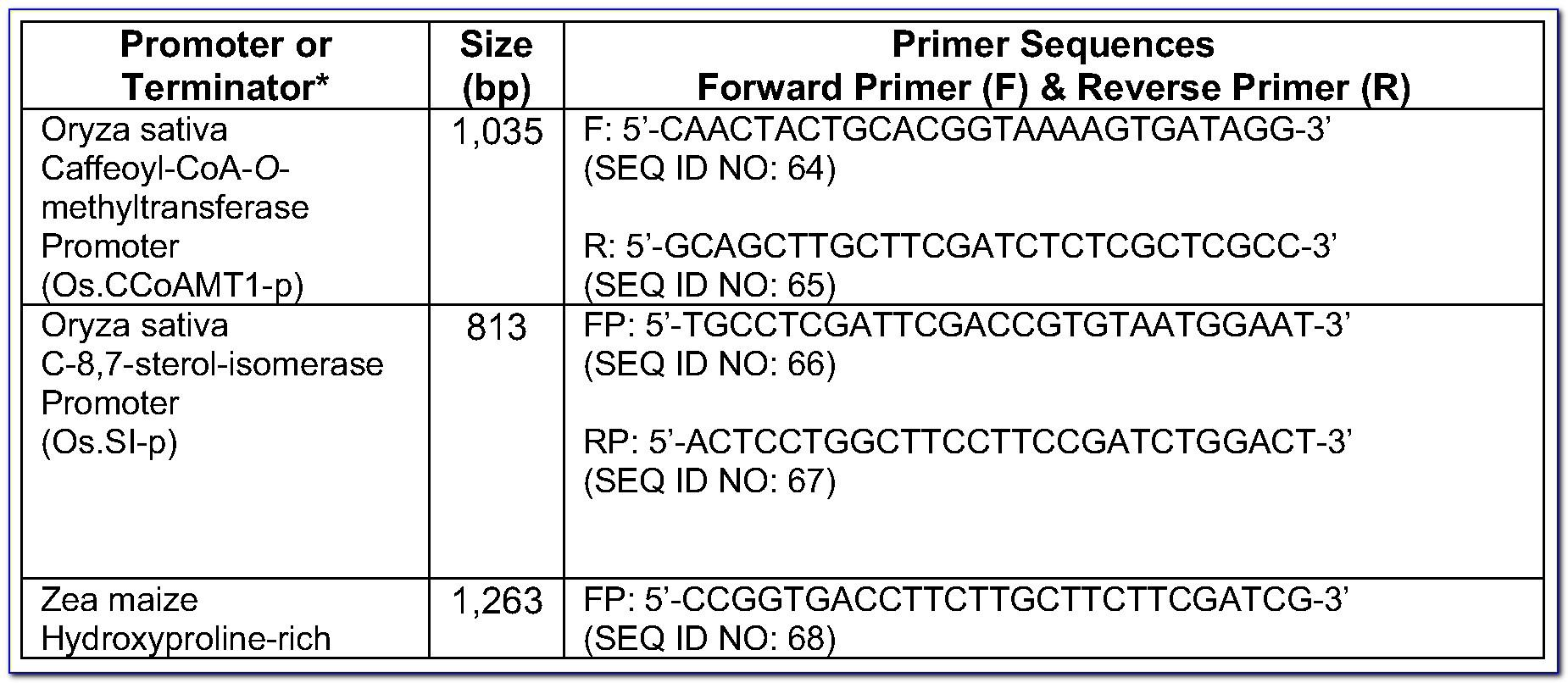 Expand Long Template Pcr System Roche Protocol