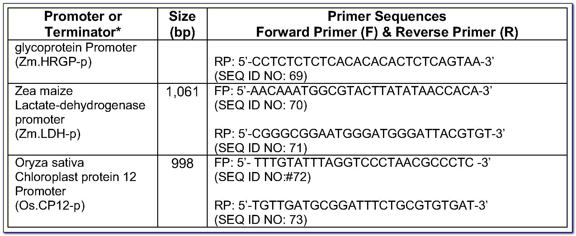 Expandtm Long Template Pcr System Protocol