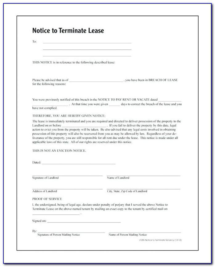 Landlord Tenant Lease Agreement Georgia