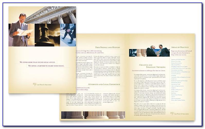 Legal Size Brochure Template Illustrator