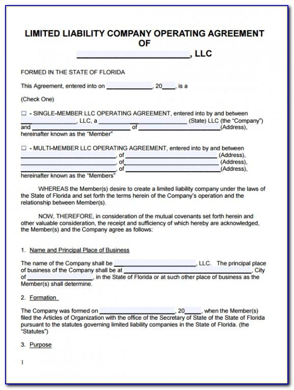 Llc Articles Of Organization Template Indiana