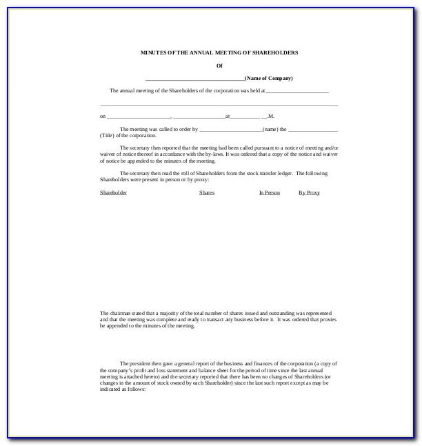 Llc Minutes Template Word