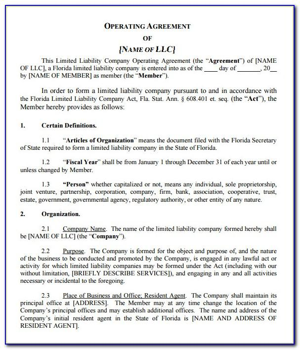 Llc Operating Agreement Template Georgia
