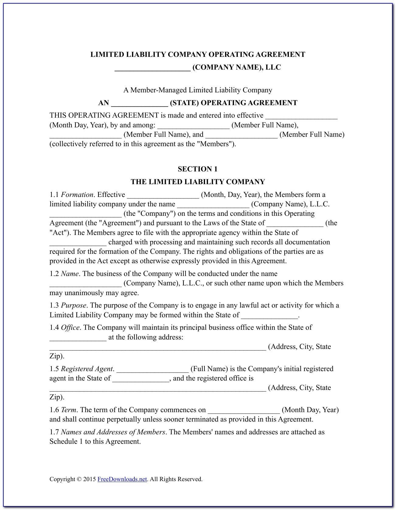 Llc Operating Agreement Template New York