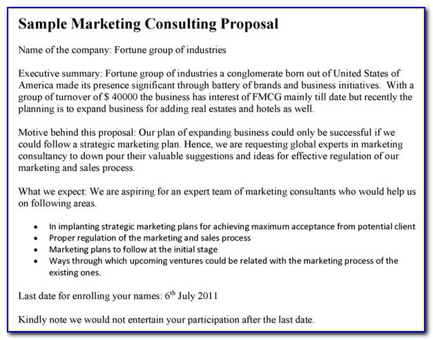 Marketing Consulting Proposal Example