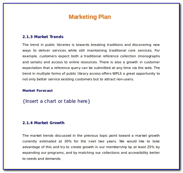 Marketing Plan Example Word
