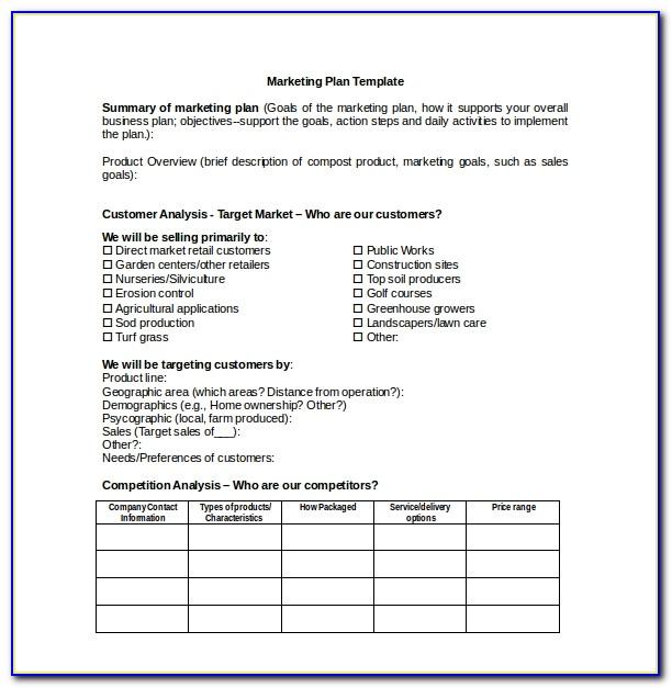 Marketing Plan Template Word Doc