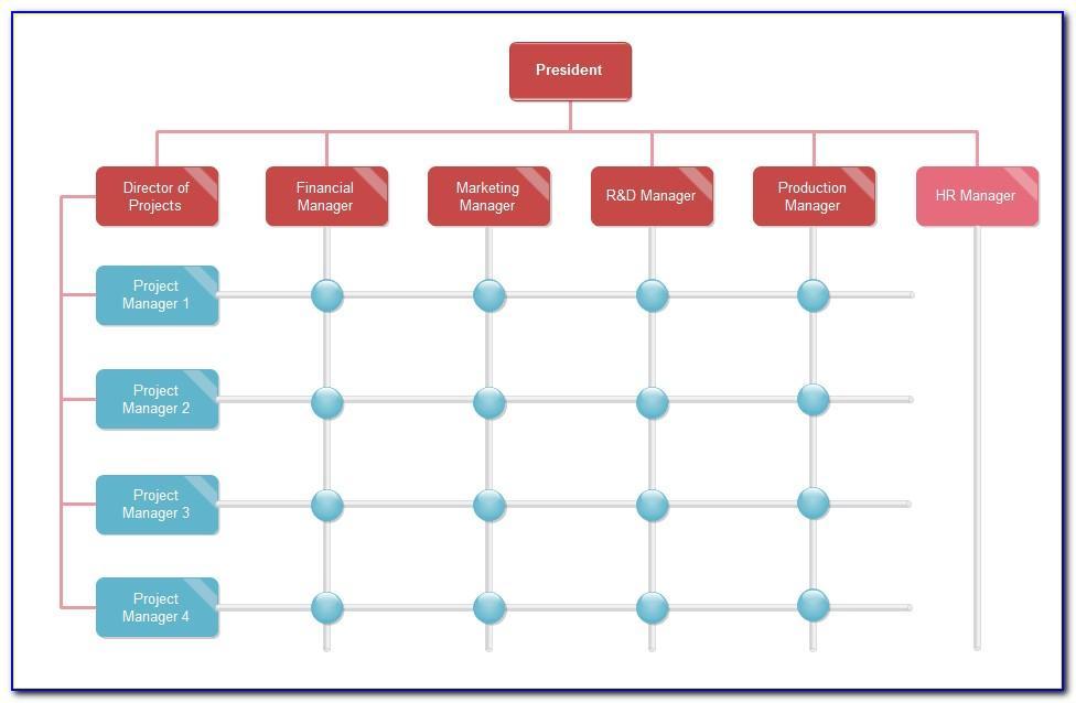 Matrix Management Structure Template