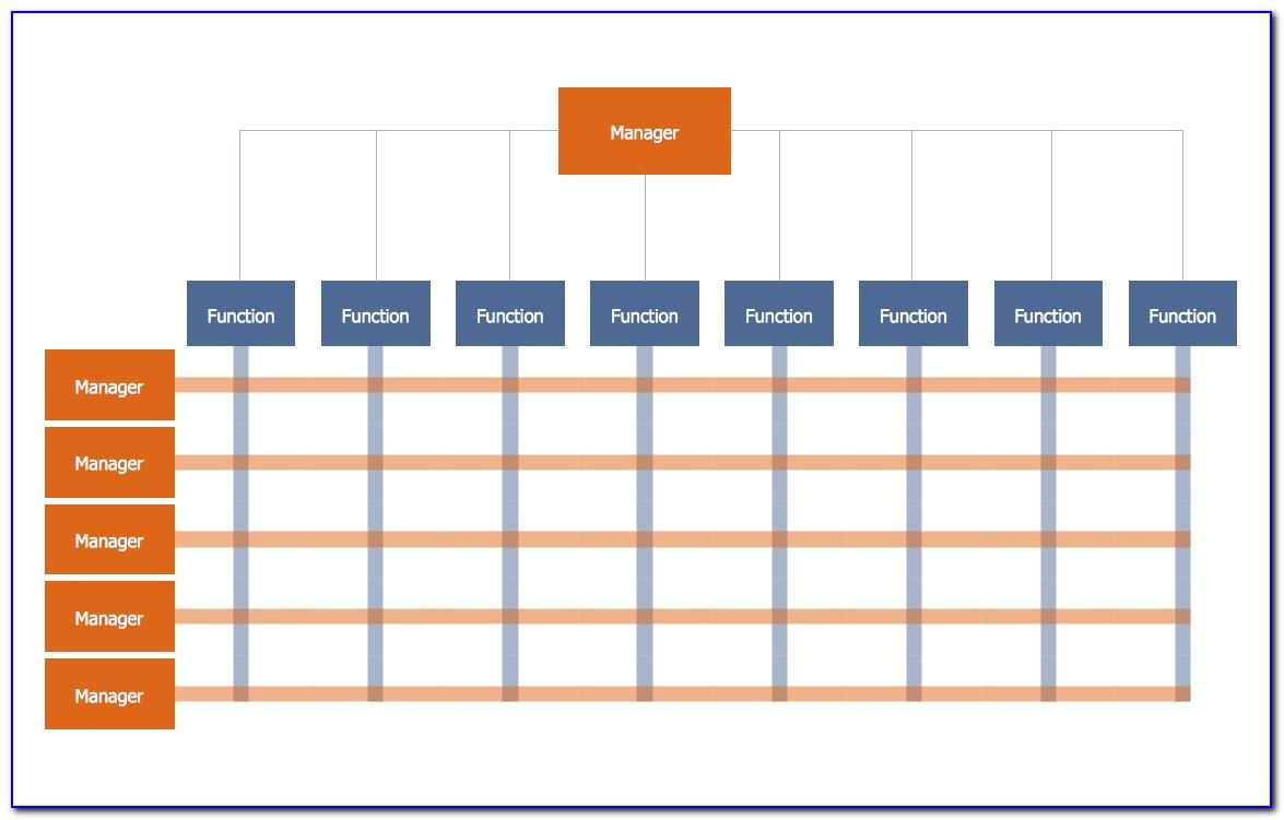 Matrix Organization Structure Example
