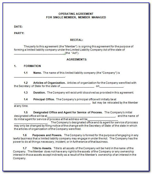 New York State Llc Operating Agreement Template
