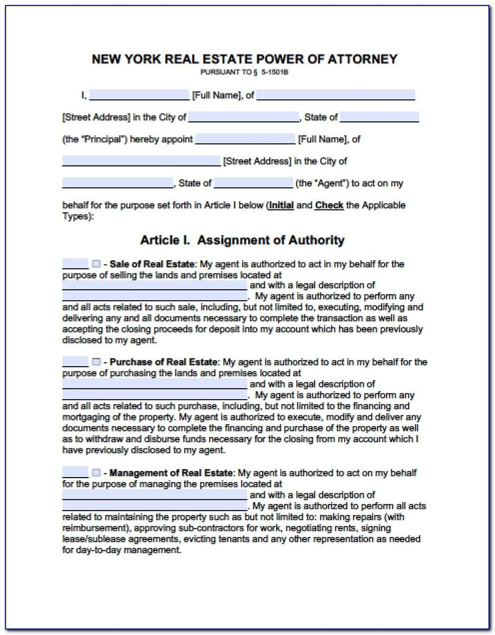 Nys Limited Power Of Attorney Form