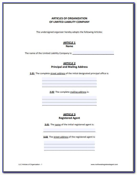 Ohio Llc Articles Of Organization Template
