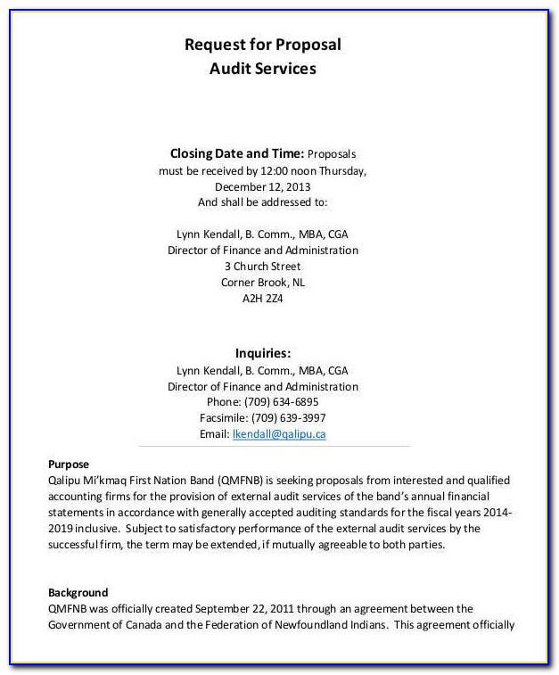 Annual It Audit Plan Template