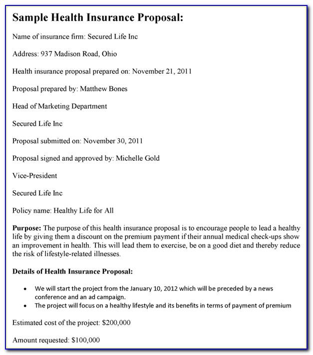 Health Care Grant Proposal Sample
