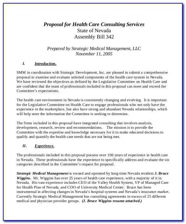 Health Care Proposal Template