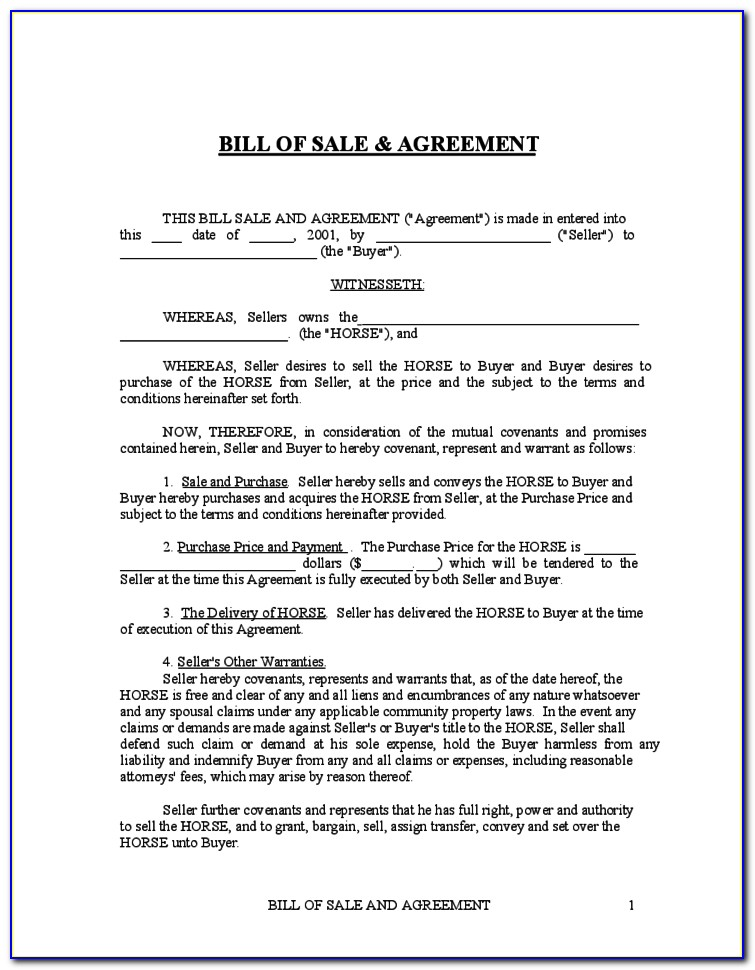 Horse Sale Contract Example
