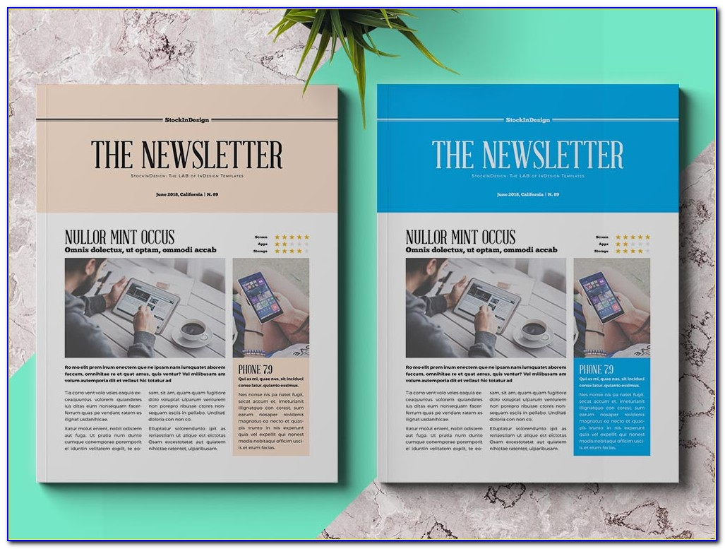 Indesign Newsletter Template Download