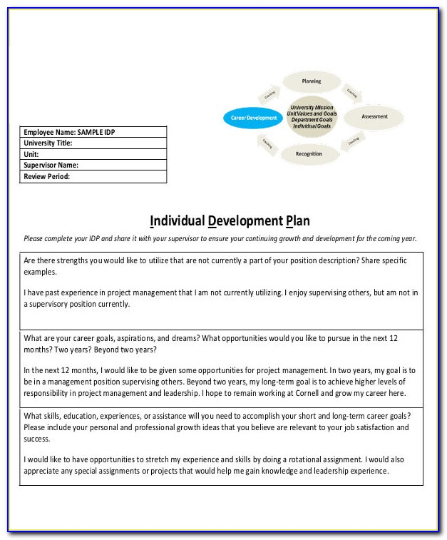 Individual Development Plan (idp) Samples For Busy Managers