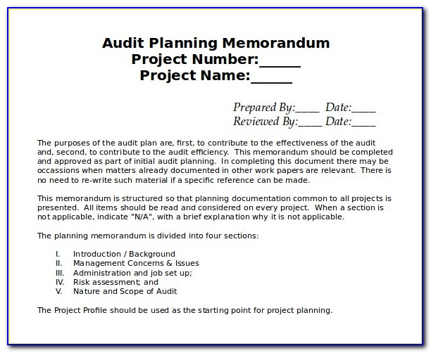 Internal Audit Schedule Templates