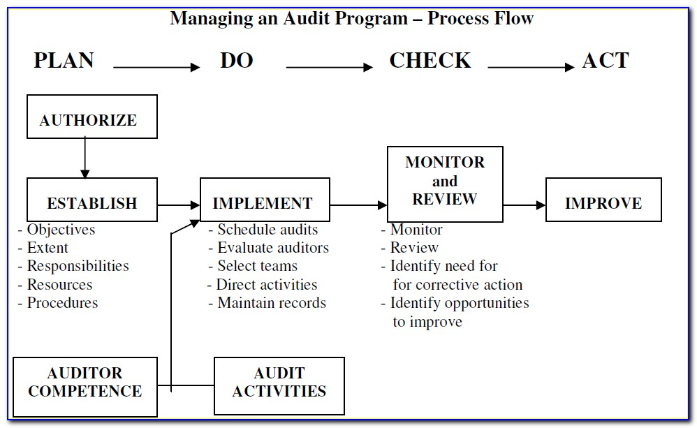 Internal Audit Strategic Plan Template