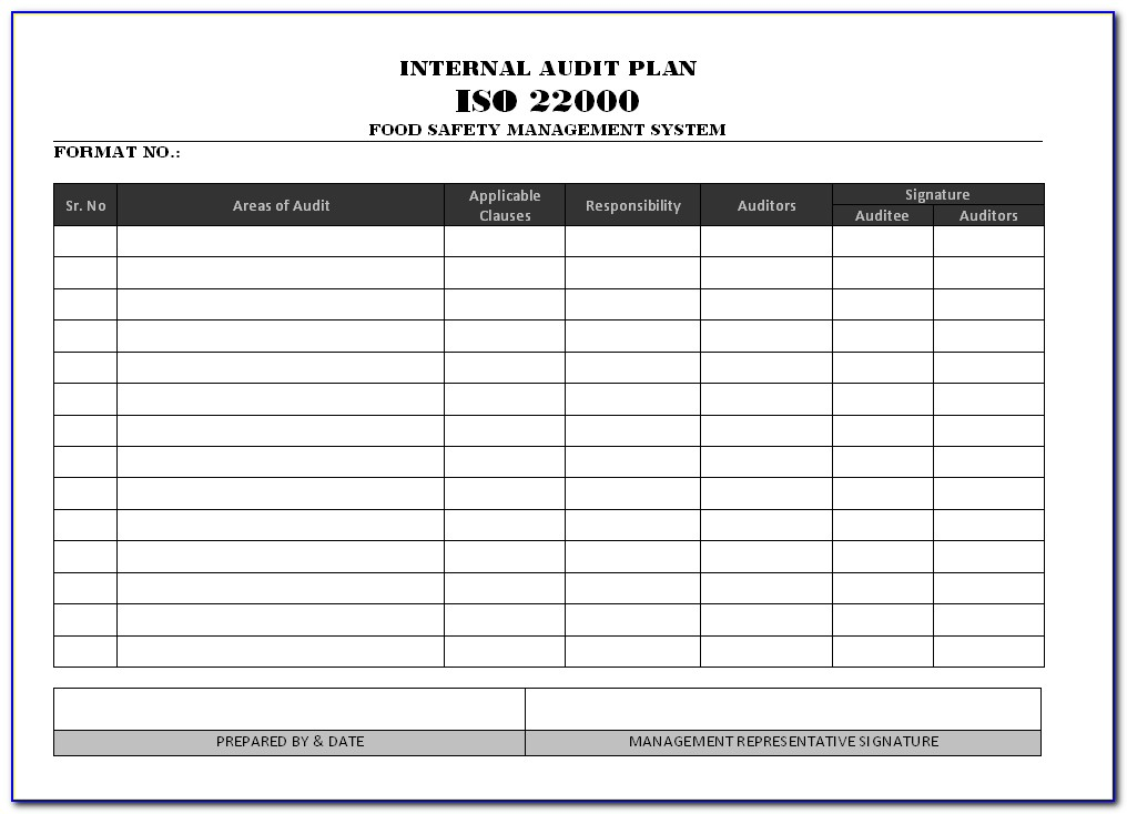Iso Internal Audit Plan Sample