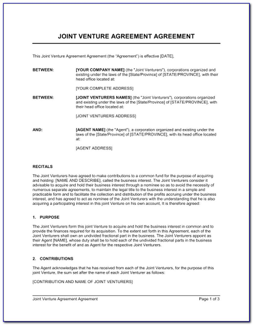 Joint Venture Agreement Sample Template