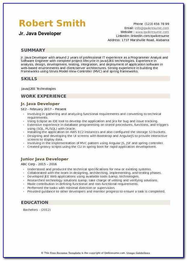 Junior Java Developer Cv Template