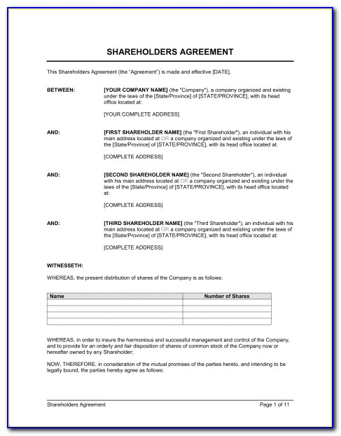 Free Shareholder Agreement Template South Africa