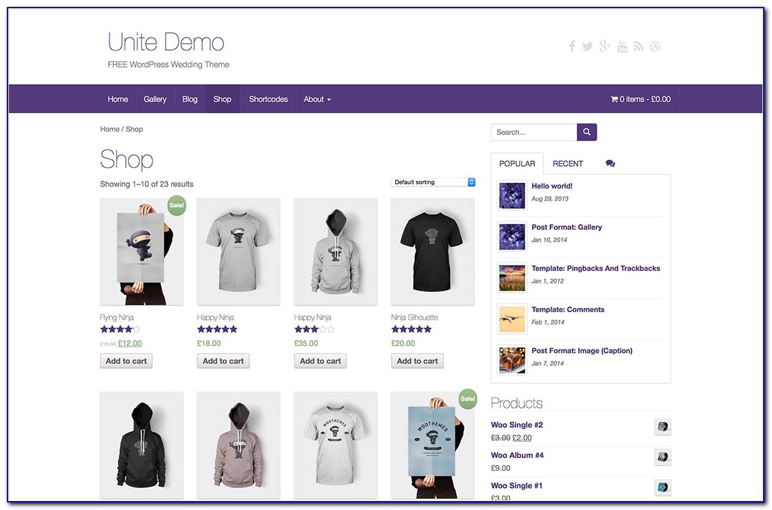 Free Template For Wordpress Ecommerce