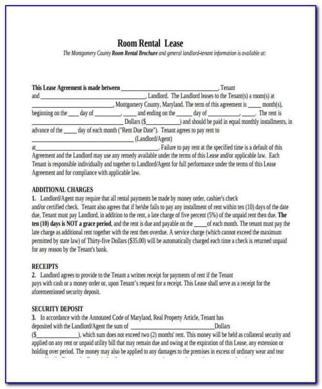 Generic Employment Application Form Pdf