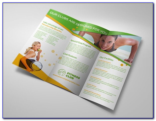 Gym Business Plan Template Download