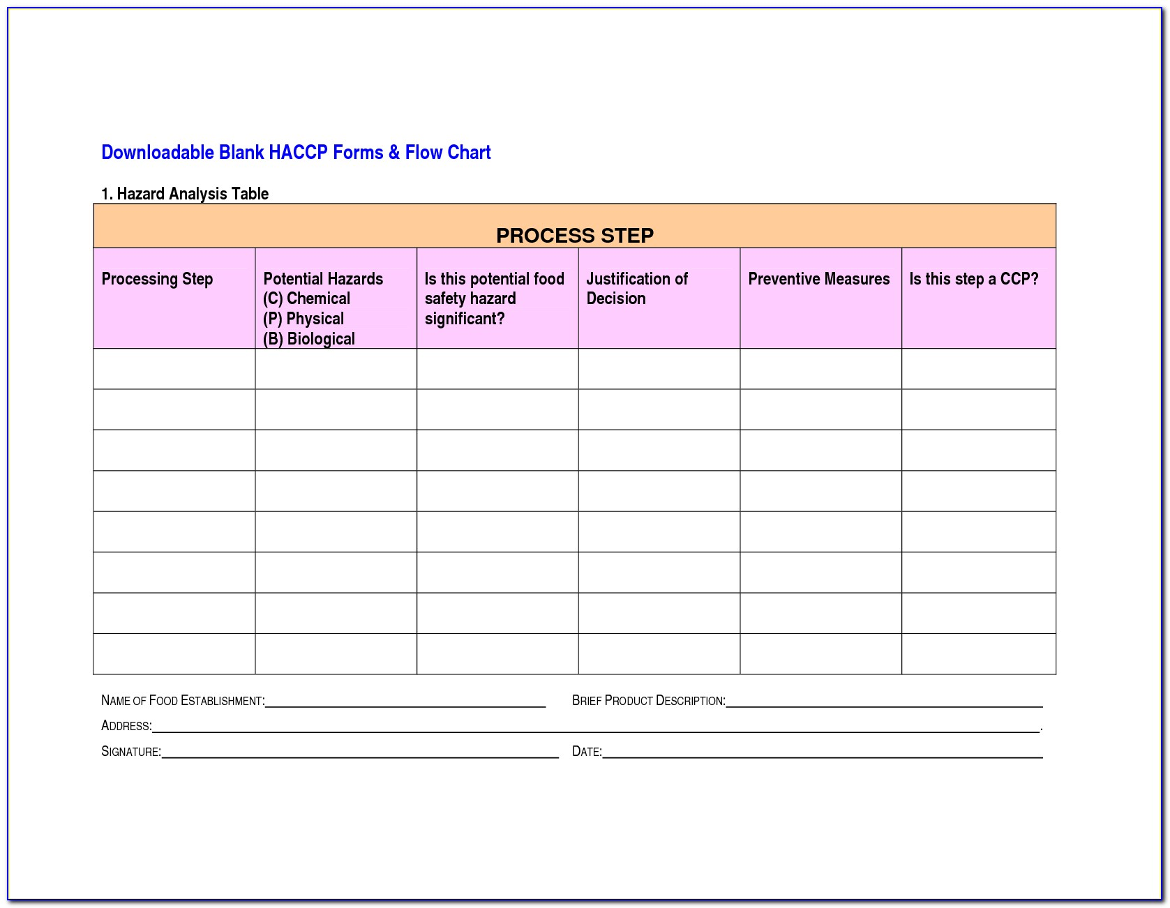 Haccp Plan Template Word Document