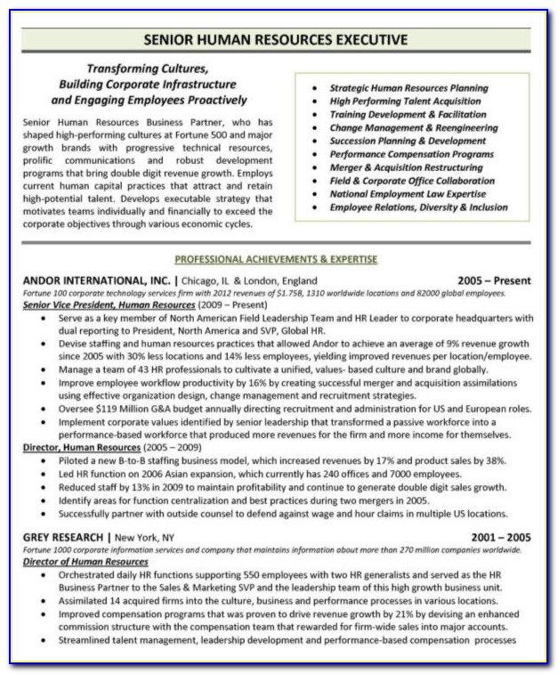 Free Executive Resume Templates Downloads