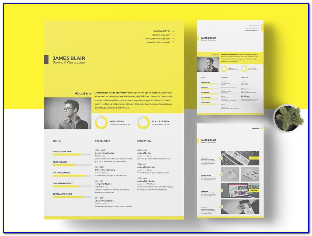 Free Indesign Resume Template 2015