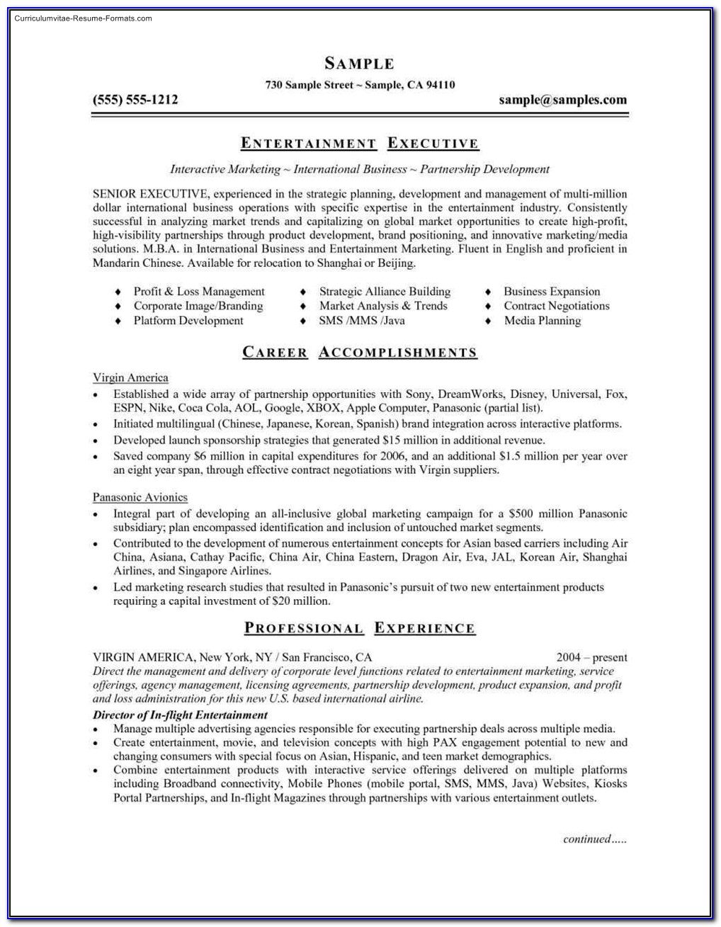 Free Ms Word 2007 Resume Templates