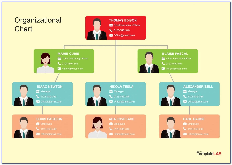Free Organizational Chart Template Word 2003