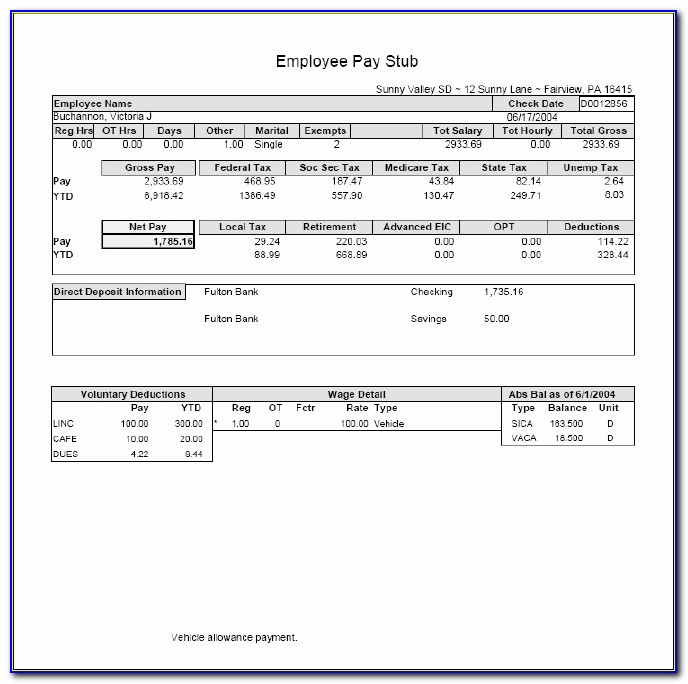 Free Pay Stub Maker Template