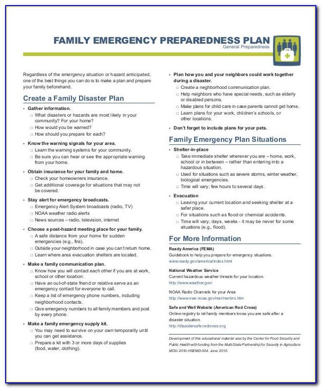 Family Emergency Preparedness Plan Example