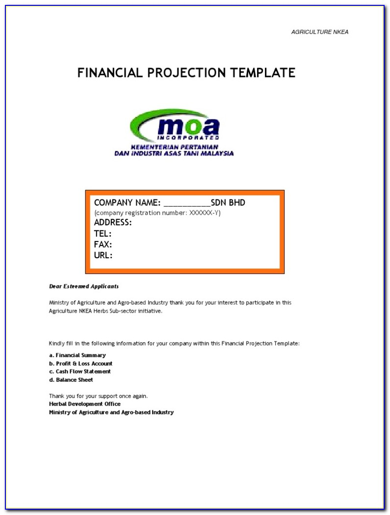Financial Projection Sample Pdf