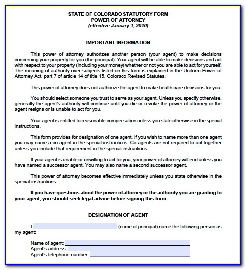 Free Financial Power Of Attorney Form Illinois