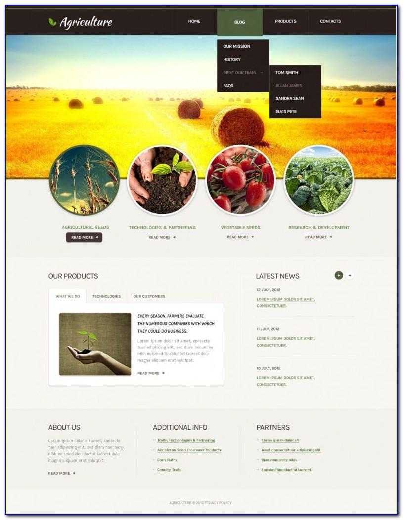 Drupal 8 Responsive Themes Free Download