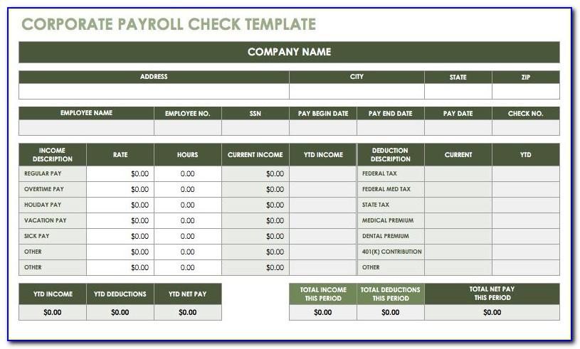 Employee Paycheck Stub Template
