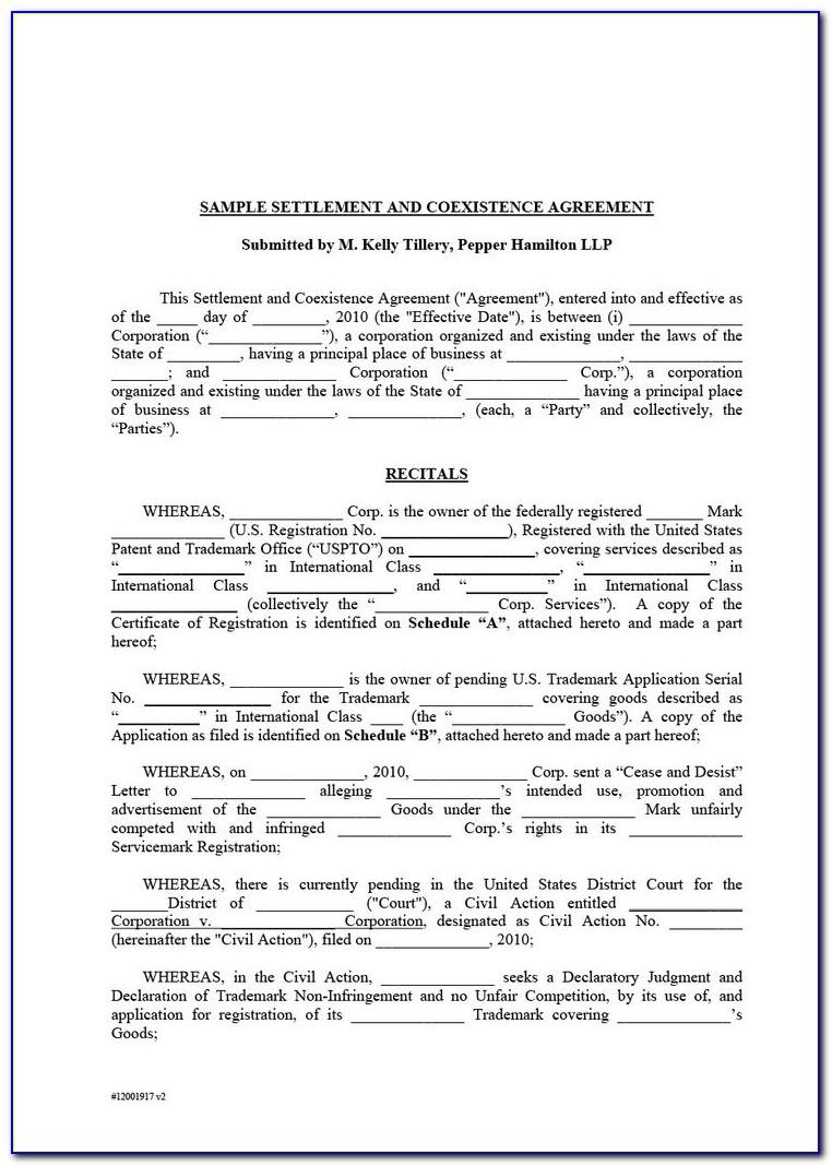 South African Divorce Settlement Agreement Template