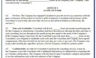 Consultant Agreement Template South Africa