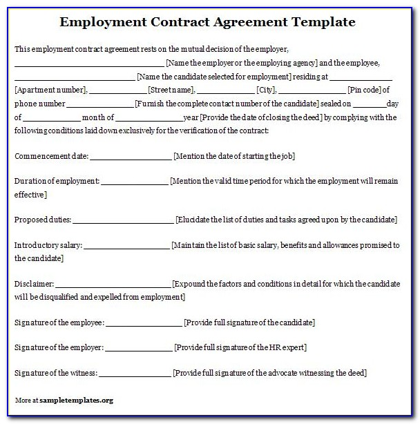 Contractual Employee Agreement Sample Contract