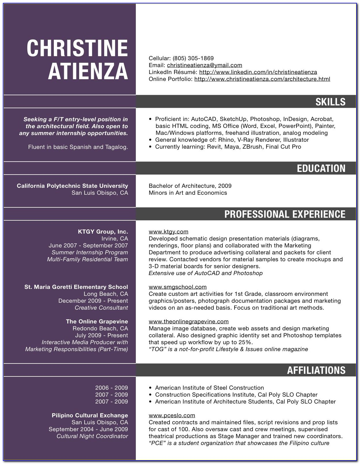 Copy Paste Resume Format