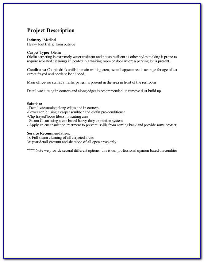 Carpet Cleaning Business Plan Sample